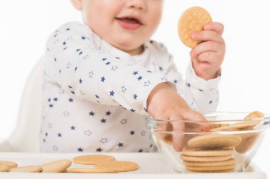 cropped shot of little boy taking cookies from bowl and sitting in highchair isolated on white background