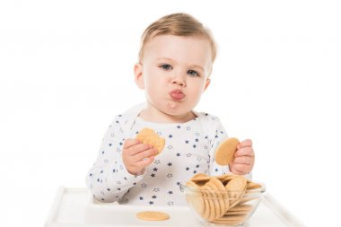 adorable baby boy eating cookies sitting in highchair isolated on white background