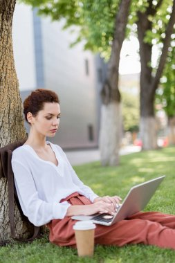 beautiful young freelancer working with laptop while leaning back on tree trunk in park