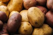 Organické syrové brambory na bílém pozadí
