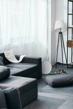 grey sofa, flowers and pillows in robbed apartment
