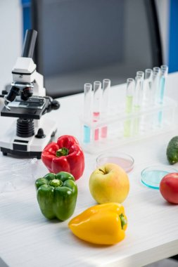 Microscope, fruit, vegetables, test tubes on table in lab stock vector