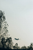 Silhouettes of trees and aeroplane in sky at sunset