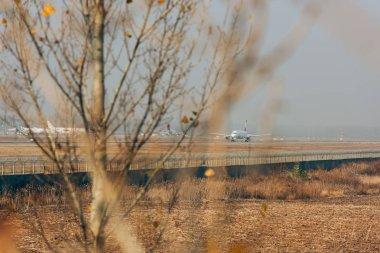 Selective focus of jetliner on runway in field stock vector