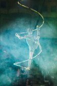KYIV, UKRAINE - NOVEMBER 1, 2019: Back view of air gymnast performing in smoke in circus
