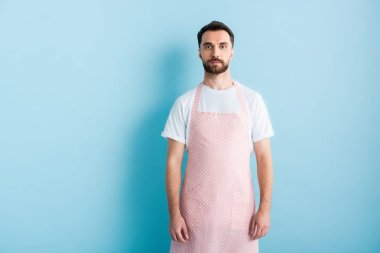 Handsome bearded man in apron standing on blue stock vector