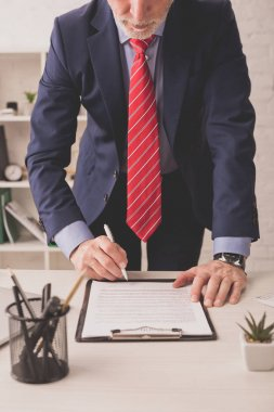 Selective focus of bearded broker signing document near stationery and plant on desk stock vector