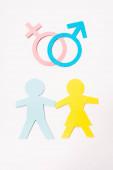 Fotografie Draufsicht auf Papier geschnittene Menschen in der Nähe von Geschlechtsmerkmalen isoliert auf weißem, sexuellem Gleichstellungskonzept
