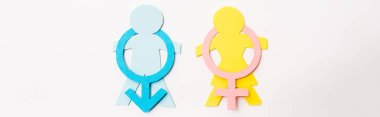Panoramic shot of colorful paper cut people near gender signs isolated on white, sexual equality concept stock vector