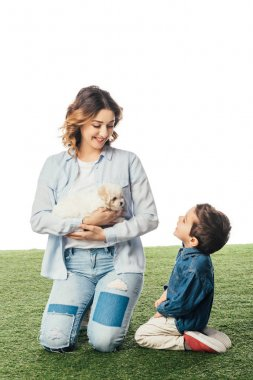 smiling mother holding Havanese puppy and son looking at her isolated on white