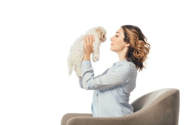 Side view of woman holding Havanese puppy and sitting on armchair isolated on white stock vector