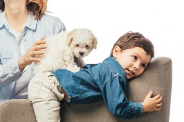cropped view of mother holding Havanese puppy and son lying on armchair isolated on white
