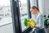 Fotografie Boční pohled na ženu pomocí hadru a čisticího prostředku při čištění okna doma