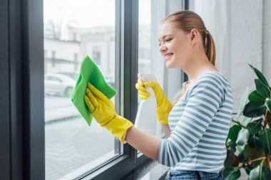 Side view of attractive woman cleaning glass of window with rag and detergent stock vector
