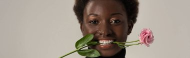 panoramic shot of cheerful african american woman holding eustoma flower in teeth isolated on grey