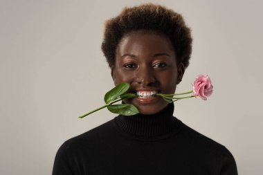 smiling african american woman in black turtleneck holding pink flower in teeth isolated on grey