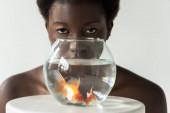 nahý africký americký dívka dívá přes akvárium s rybami izolované na šedé