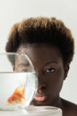 Fotografie african american girl looking through aquarium with fish isolated on grey