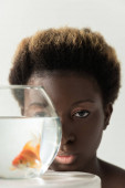african american girl looking through aquarium with fish isolated on grey
