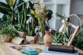Művészeti kellékek-tábla zöld növények