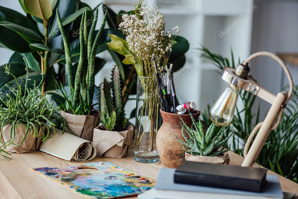 Green plants with art supplies on table