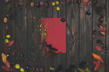 autumn leaves and blank card