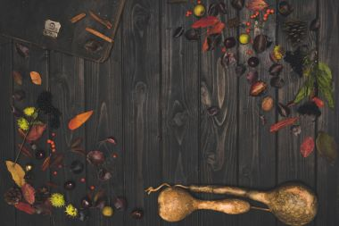 dried autumn leaves and pumpkins
