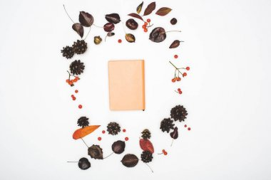 dry autumn leaves and notebook