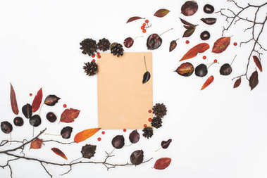 dried leaves and blank card