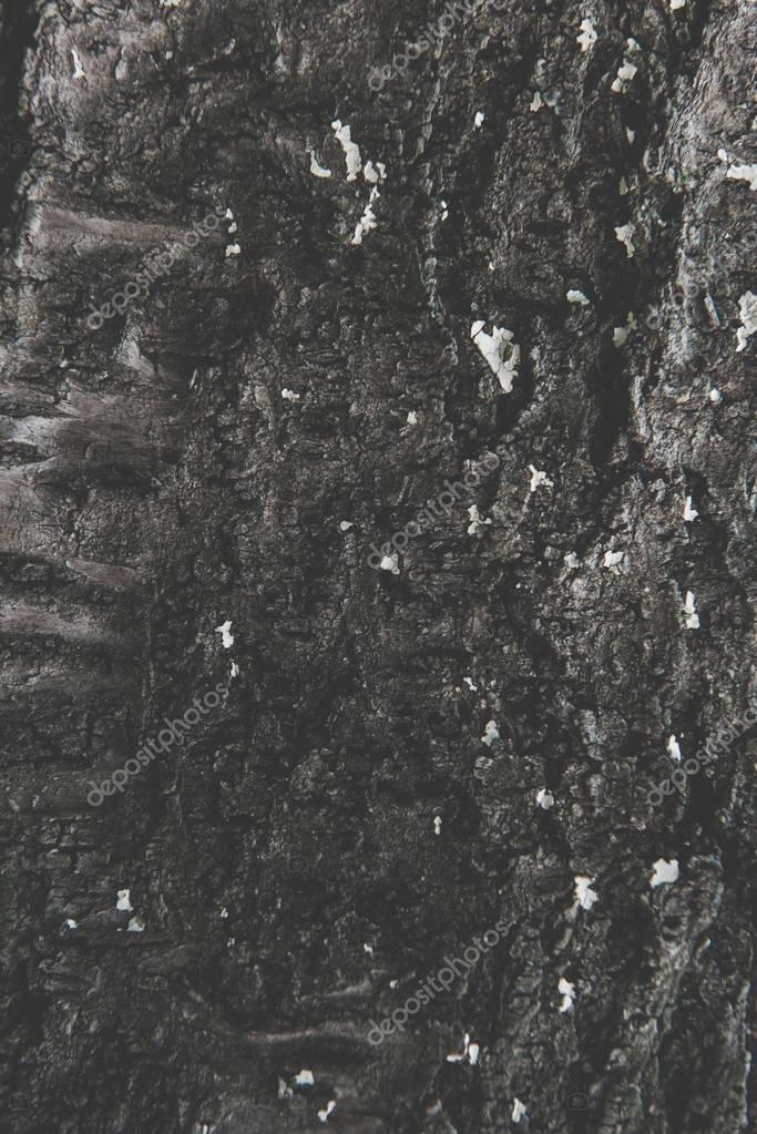 black rough background
