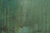 Fotografie Zelená stěna