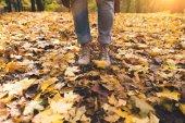 osoba stojící na spadané listí