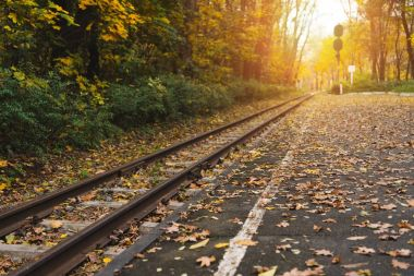 railway station in autumn forest