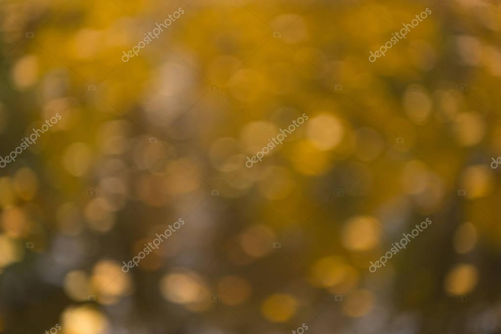 Фотообои blurred autumn nature