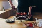 Fényképek Nő vágás csokoládé torta