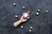 Fotografie Quail eggs around mannequin hand with chicken egg on dark background