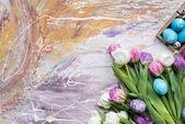 Malovaná vajíčka a tulipány na barevné pozadí