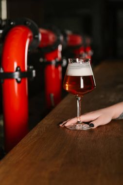cropped shot of human hand with glass of fresh beer in bar