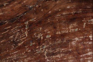Old grunge textured wooden background