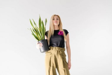 low angle view of stylish blonde girl holding potted plant isolated on grey