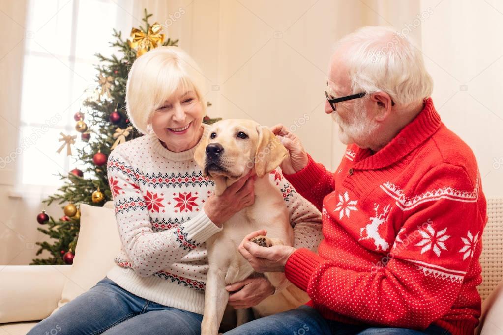 senior couple with dog at christmas