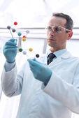 Pane doktore, zkoumání molekulární model