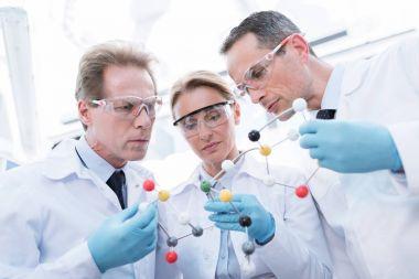 doctors examining molecular model