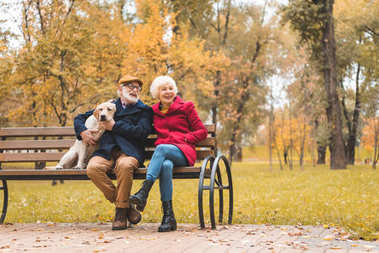 senior couple with dog sitting on bench