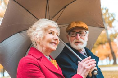 Portrait of senior couple with umbrella in autumn park stock vector