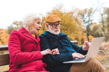 senior couple using laptop in park