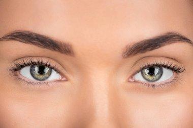 "Картина, постер, плакат, фотообои ""глаза"", артикул 173001496"
