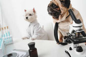Fotografie dogs scientists in lab