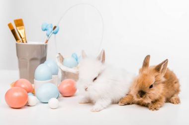 Cute furry rabbits and painted easter eggs on white stock vector