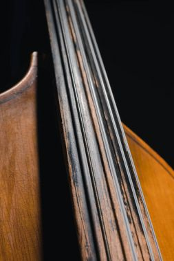 close-up shot of contrabass viol isolated on black